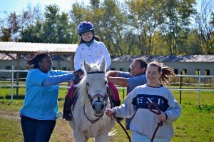 Exceptional Equestrian Indiana - Rogers Roofing