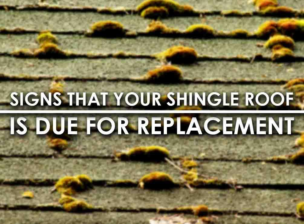 5 Signs That Your Shingle Roof is Due for Replacement – Shingle Roof Replacement