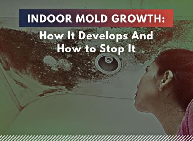 Indoor Mold Growth