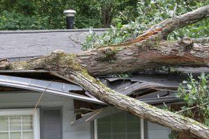 Emergency Storm Damage Repair Chicago IL